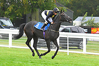 Stay Forever ridden by Marie Perrault goes down to the start  of The Shadwell Racing Excellence Apprentice Handicap Div 1 during Horse Racing at Salisbury Racecourse on 14th August 2019