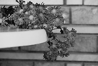 """Black & white stock photo of flowers lying gracefully on a round table against a brick wall.<br /> <br /> View the gallery - """"Conceptual - Life & Surroundings"""" for the color version of this image."""