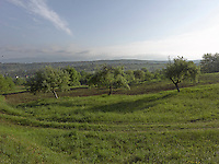 OR_LOCATION_45028