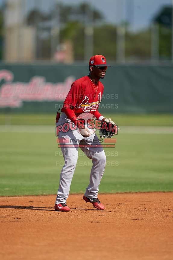 GCL Cardinals shortstop Franklin Soto (5) during a Gulf Coast League game against the GCL Astros on August 11, 2019 at Roger Dean Stadium Complex in Jupiter, Florida.  GCL Cardinals defeated the GCL Astros 2-1.  (Mike Janes/Four Seam Images)