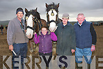 TRADIONAL; Ploughing in the old tradional way at the Abbeydorney Ploughing competition with their Clydales Muckross, l-r: Stephen Glavin, Aoife O'Connor, (Ballyduff), Brandon Glavin and Tom Barrett (Causeway).....