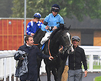 Winner of The British EBF Molson Coors Novice Stakes Div 1 Ascension ridden by Jack Mitchell and trained by Roger Varian is led into the Winner's enclosure during Horse Racing at Salisbury Racecourse on 14th August 2019