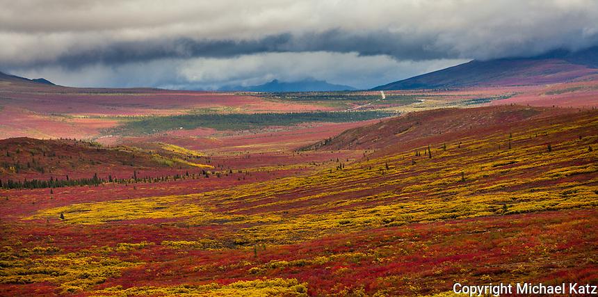 Primrose Ridge,Denali