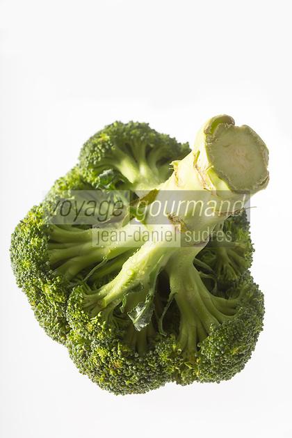 Gastronomie Générale/  Brocoli, Brassica oleracea va // Brocoli