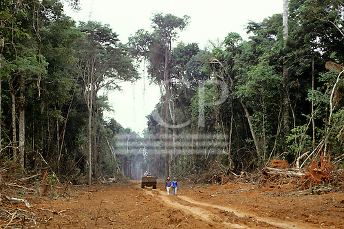 Juruena, Mato Grosso State, Brazil; two road workers and a dumper truck on a newly cleared road through the rainforest.