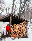 ARGENTINA, Patagonia, mid adult man standing by heap of firewood