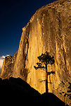 Sunset light bathes the face of Half Dome in Yosemite National Park, California.