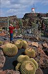 El Jardin de cactus imagine par Cesar Manrique abrite une des plus belles collections de cactus du monde. Lanzarote.
