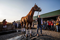 LOUISVILLE, KY - MAY 06: Trainer Bob Baffert brings outKentucky derby winner Justify for the fans to see at Churchill Downs on May 6, 2018 in Louisville, Kentucky. (Photo by Alex Evers/Eclipse Sportswire/Getty Images)