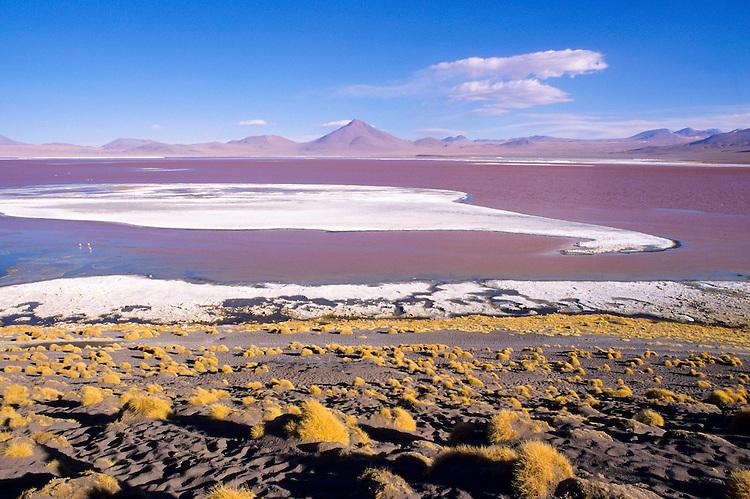 Laguna Colorada, Lipez Sur, Bolivia, 1999.