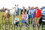 Wheeling and dealing at the horse fair in Puck Fair on Sunday was front row l-r: Mark Foley Listowel, Cora Sheil Listowel Ronan Delmase Nice, France. Back row: Charlie Moriarty Currow, Tim O'Sullivan,  Mike Enright and Pat O'Connor all Castlemaine