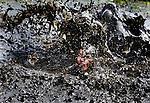 SCHERMERHORN - Deelnemers aan de traditionele Prutmarathon in het Noord-Hollandse Schermerhorn doorkruisen  blubberige sloten. Het open kampioenschap is voor mensen zonder smetvrees .Na afloop kunnen de deelnemers genieten van een warm bad of douche van de plaatselijke brandweer.