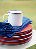 Unbreakable (enamelware) plates & mug with cotton napkins for picnic lunch.