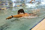 2014-06-08 MidSussexTri 03 AB Swim