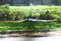 S&Atilde;O PAULO, SP - 25.02.2014 - CORPO DE EMPRESARIO NA RAIA DA USP- Corpo de empres&aacute;rio &eacute; encontrado na raia da USP, Cidade Universit&aacute;ria na zona Oeste de S&atilde;o Paulo.<br /> FOTO: (Aloisio Mauricio / Brazil Photo Press)