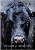 Simon, REALISTIC ANIMALS, REALISTISCHE TIERE, ANIMALES REALISTICOS, innovative, paintings+++++A_AidanS_Orion,GBWR139,#a#, EVERYDAY ,cow,bull