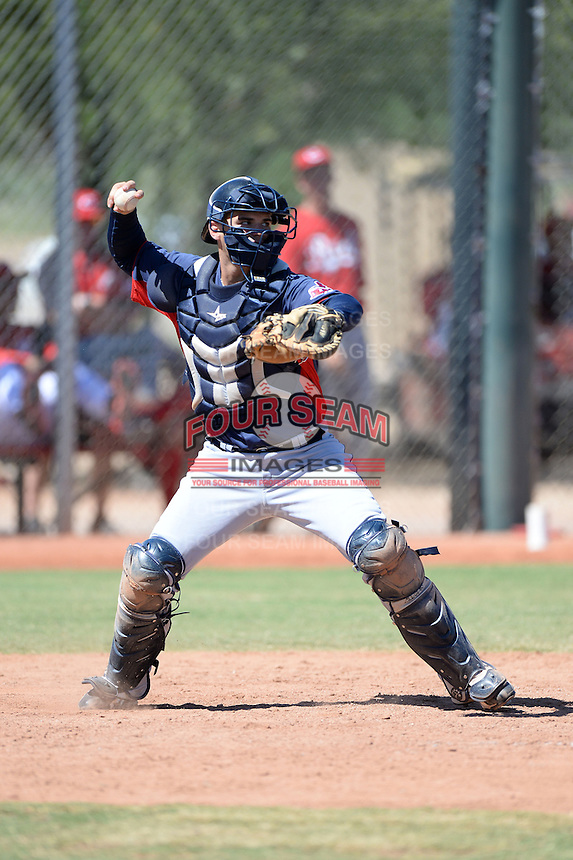 Cleveland Indians catcher Jeremy Lucas (10) during an instructional league game against the Cincinnati Reds on September 28, 2013 at Goodyear Training Complex in Goodyear, Arizona.  (Mike Janes/Four Seam Images)