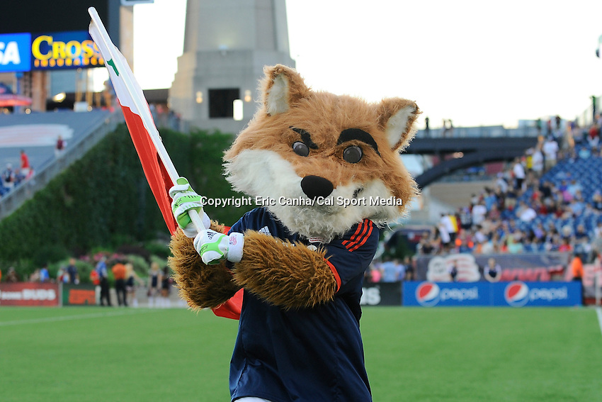 June 28, 2014 - Foxborough, Massachusetts, U.S. - New England Revolution mascot Slye entertains spectators before the MLS game between the Philadelphia Union and the New England Revolution held at Gillette Stadium in Foxborough Massachusetts.  Philadelphia defeated New England 3-1.  Eric Canha/CSM