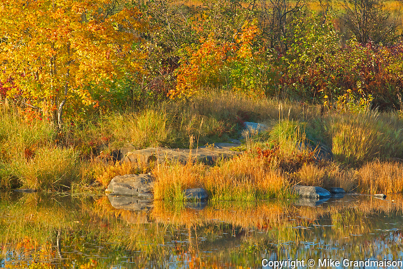 Autumn colors and rocks along the Vermilion River in the Sudbury District. The river flows into Lake Huron<br />Whitefish<br />Ontario<br />Canada