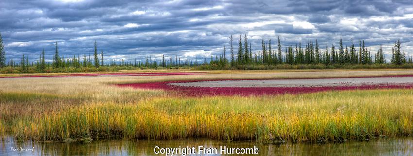 Salt Plains in fall