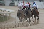 March 14, 2015: Azeri Stakes at Oaklawn Park in Hot Springs, AR. Justin Manning/ESW/CSM