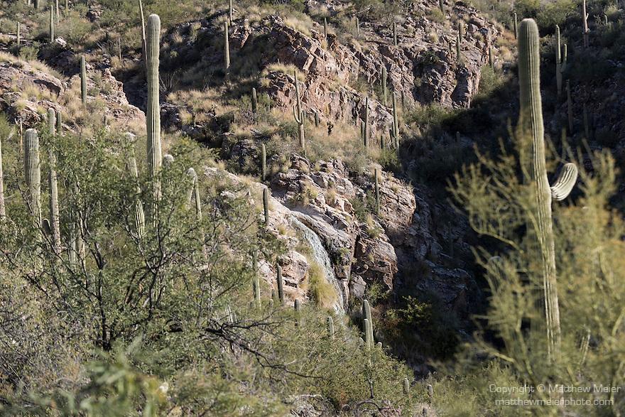 Tucson, Arizona; Ventana Canyon Waterfall, as seen across the desert landscape