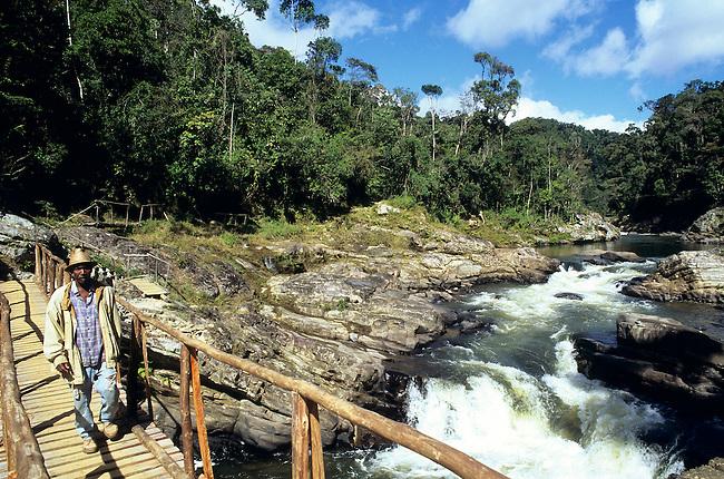 Paysage du parc de Ranomafana. Un homme traverse la riviere sur un pont de bois. *** Landscape in Ranomafana, man crossing a wooden bridge.