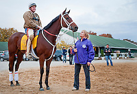Havre de Grace, ridden by trainer Larry Jones, waits November 3, 2011 for her workout for the 2011 Breeders' Cup at Churchill Downs.  Cindy Jones also pictured.
