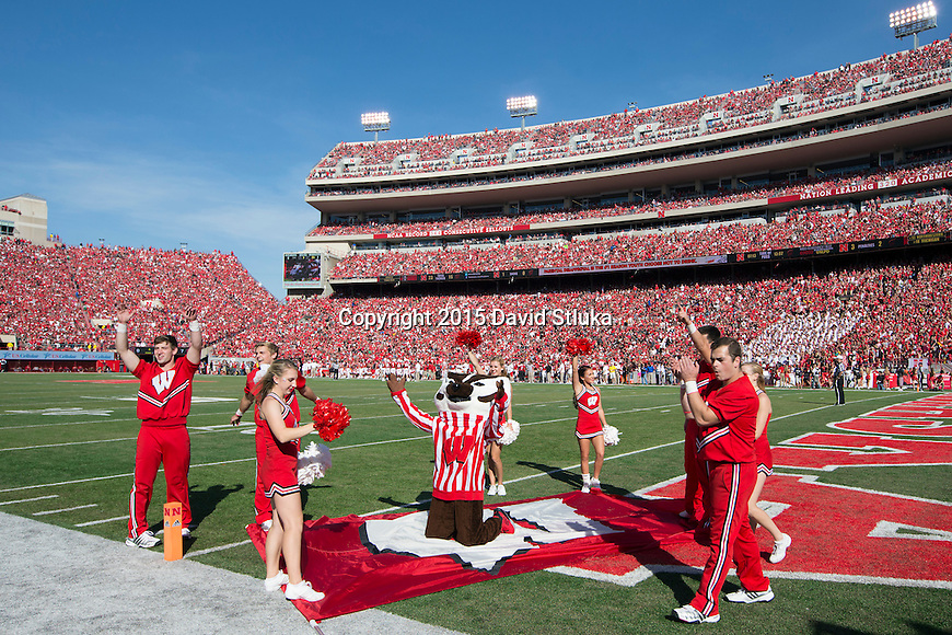 Wisconsin Badgers mascot Bucky Badger celebrates a touchdown with the cheerleaders during an NCAA Big Ten Conference college football game against the Nebraska Cornhuskers Saturday, October 3, 2015, in Lincoln, Neb. (Photo by David Stluka)