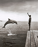 HONDURAS, Roatan, dolphin trainer and jumping dolphin, Anthony's Key (B&W)