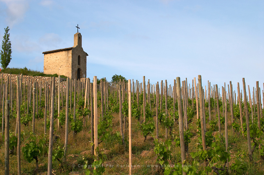 The la chapelle chapel vineyard hermitage rhone france