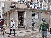A black dog standing guard, La Habana Vieja