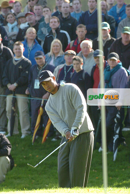 THOMASTOWN, IRELAND. Tiger Woods from USA chipping his third onto the green on the 9th during the American Express Championship day three at the Mount Juliet Golf Club on October 2nd, 2004 in Thomastown, Ireland ..Photo AFP/NEWSFILE/FRAN CAFFREY..(Photo credit should read FRAN CAFFREY/NEWSFILE/AFP)...This Picture has been sent you under the condtions enclosed by:.Newsfile Ltd..the Studio,.Millmount Abbey,.Drogheda,.Co Meath..Ireland..Tel: +353(0)41-9871240.Fax: +353(0)41-9871260.GSM: +353(0)86-2500958.email: pictures@newsfile.ie.www.newsfile.ie.FTP: 193.120.102.198..This picture is from Fran Caffrey@newsfile.ie