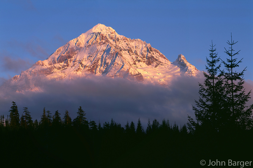69ORCAN_101 - USA, Oregon, Mount Hood National Forest, Evening light defines fresh autumn snowfall on northwest side of Mount Hood above fog and conifers.