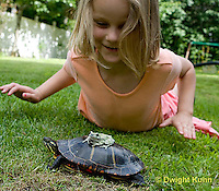1R24-502z  Child looking at Painted Turtle with Gray Treefrog [Hyla versicolor] on turtle's back, Chrysemys picta, PRA