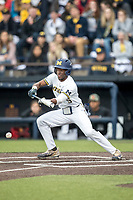 Michigan Wolverines outfielder Christian Bullock (5) lays down a bunt against the Maryland Terrapins on April 13, 2018 in a Big Ten NCAA baseball game at Ray Fisher Stadium in Ann Arbor, Michigan. Michigan defeated Maryland 10-4. (Andrew Woolley/Four Seam Images)