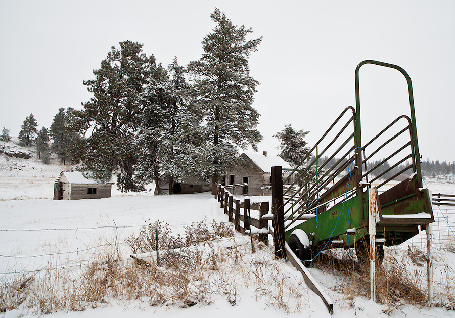 A green cattle guard rusts away among an abandoned homestead in the Palouse of Eastern Washington State.