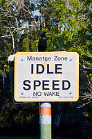 Idle Speed No Wake signs are clearly posted in bays and canals in respect for the protection of the endangered Florida Manatees that frequent the warm waters near Crystal River,Florida.