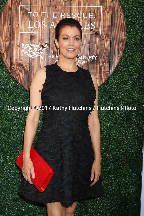 LOS ANGELES - APR 22:  Bellamy Young at the 2017 The Humane Society Gala at Parmount Studios on April 22, 2017 in Los Angeles, CA