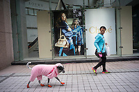 "A woman walks her dog in Daan District, Taipei, Taiwan, 2015. Daan District is an important educational, commercial, residential and cultural district of Taipei City. The name of the district means ""great safety"" or ""great peace""."