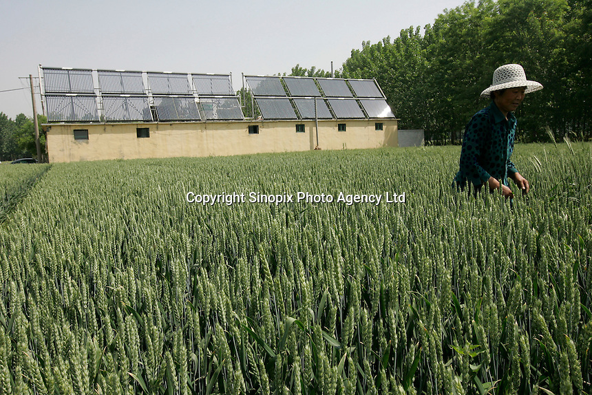 A public bath house that uses solar thermal technology is seen on a farm near the headquarters of Himin Group, the worlds largest manufacturer of solar thermal water heaters, which is based in Dezhou, Shandong Province, China. Dezhou, a city of 5.5 million people, is known as China's 'Solar Valley'. More than 90% of all households in the city use solar thermal water heaters. Ten cities in China have made it compulsory, or offered subsidies, for under twelve storey civil-use buildings, including residential, restaurants, and hotels to install solar thermal water heaters..