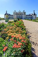 France, Loire-et-Cher (41), Chambord, château de Chambord, les jardins à la française, parterre de plantes vivaces (Achillée millefeuille, Geranium, Alstroemeria) bordé de fusains et topiaires d'if