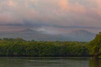 Sunrise on the mangrove forest, Santa Cruz Island, Galapagos Islands, Ecuador.