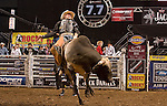 Beau Hill rides Missfit at the Professional Bullriders Tour at the Sommet Center in Nashville, Tennessee on Friday, August 29, 2008. (Photo by Frederick Breedon)