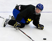 ? - Team Sweden practiced at the Urban Plains Center in Fargo, North Dakota, on Saturday, April 18, 2009 in the morning prior to their final match against the Czech Republic during the 2009 World Under 18 Championship.