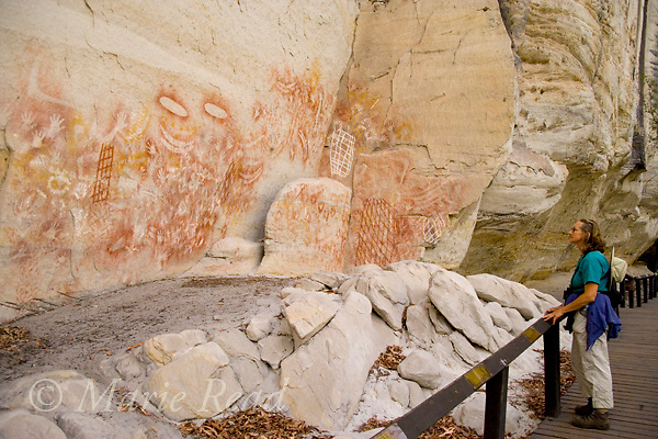 Tourist looking at aboriginal rock art, Carnarvon Gorge, Queensland, Australia