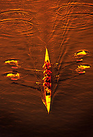 Overview of a college rowing team practicing precision rowing and teamwork in golden late afternoon light.