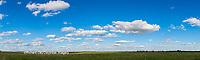 63891-02704 Clouds Marion Co. IL