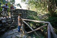 Vegetazione ai lati del Lago di Segrino..Vegetazion near lake of Segrino