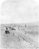 D&amp;RG track construction gang laying track near Gunnison.<br /> D&amp;RG  Gunnison, CO  Taken by Mellen and Harper, - 8/6/1881